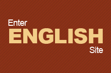 Enter ENGLISH Site